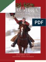 Shaumbra Monthly - December 2010