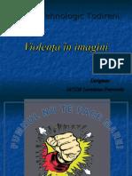 IACOB prezentare_proiectul_violenta