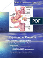 Topic 3 Amino Acid and Protein-edited