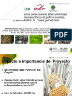 M+1_4_2+Biologia+de+insectos+polinizadores+en+palma+aceitera+-+Patricio+Ponce_compressed