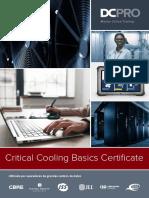 DCPRO_Online_Critical Cooling Basics-ES