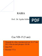 Rabia19