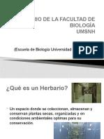 IMPORTANCIA DE LOS HERBARIOS 19 febrero 2014