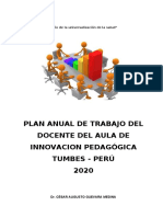 Plan Daip 2020 Cesar Guevara