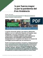Info_ERTEs_motivados_pandemia_COVID-19_Andalucía(1)