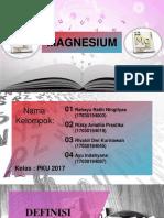 (Presentasi)_PKU17-003,019,045,087-LKMANOR2MAGNESIUM