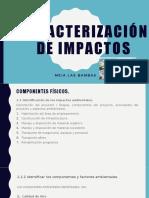 Caracterización de impactos La presenteishon..pptx