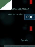 presentacion FV. seguridad del paciente.pdf
