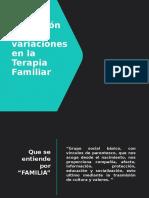 Definición y variaciones en la Terapia Familiar