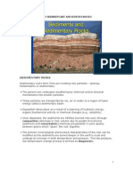 Sedimentary and Igneous Rocks
