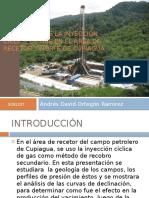 215308927-EVALUACION-DE-LA-INYECCION-CICLICA-DE-GAS-EN.pptx