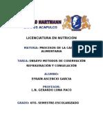ENSAYO-CONGELACION.docx