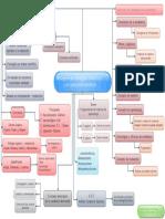 Mapa conceptual Paradigma conductista