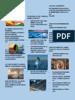 folleto gestion 1.pdf