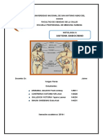 INTRODUCCIION-GENERALIDADES-PANCREAS-ENDOCRINO-INERVACIONBIBLIOGRAFIA-suprarenales.docx