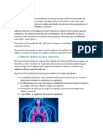 Aparato respiratorio 10