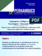 Dança e Luta Análise das semelhanças e diferenças entre danças das regiões Sul e Sudeste do país