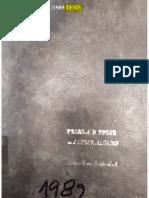 TESIS CARMEN D SANDOVAL reducido.pdf