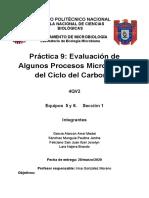 Evaluacion de procesos microbianos en el ciclo del carbono