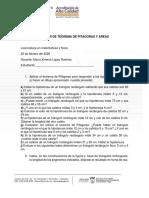 TALLER DE TEOREMA DE PITÁGORAS Y ÁREAS