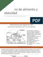 consumo alimento obesidad.pdf