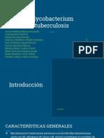 Mycobacterium t..pdf