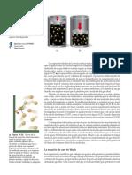 Quimica la Ciencia Central (Brown)