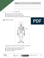 PDN_2017_Noviembre_CIE_2_Aptus.pdf