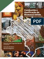 2008-MME__Combustao e Gaseificacao Biomassa Solida__Solucoes Energeticas para a Amazonia.pdf