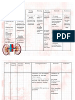 NCP for Pyelonephritis