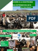 Sistemas ganaderos Producción caprina