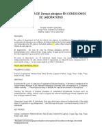 CICLO DE VIDA DE Danaus plexippus EN CONDICIONES DE LABORATORIO.doc