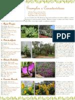 Arbustos.pdf