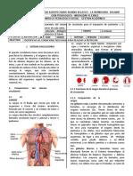 GUIA 1 SEPTIMO BIOLOGIA.docx