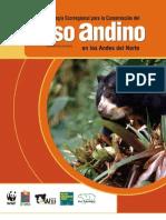 Bear Andean Regional Conservation