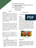 compilado final procesos de fruver.docx