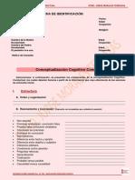 FORMATO FORMULACION COGNITIVO CONDUCTUAL Y PLAN DE TRATAMIENTO.pdf