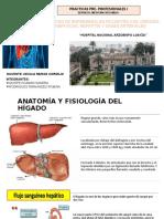 hepatitis y cirrosis hepaticas (1)