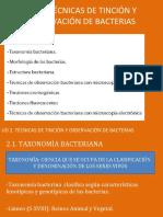 1.1 Taxonomía y Morfología bacteriana