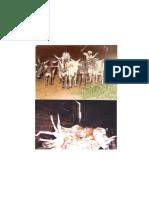 PCA_act_complete.pdf