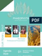 Tugas Kelompok 4 - Phaeophyta