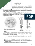 Ficha trabalho n3 Geologia 10 ano.pdf