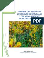 Informe Ambiental....pdf