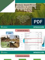 Biomimetica Terrestres - Contaminación agricola.pdf