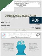 Funciones Mentales. Lo Normal y Lo Patológico_28061402