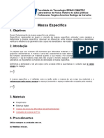 Roteiro 1 - Massa especifica.docx