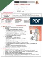 309643260-Sistema-Nervioso-Sesion.docx