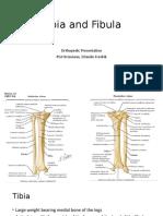 PGI-OCTAVIANOTibia-and-Fibula