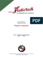 11-Rupture culbuteur.pdf