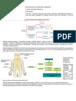 Guía n°1 segundo medio Biología